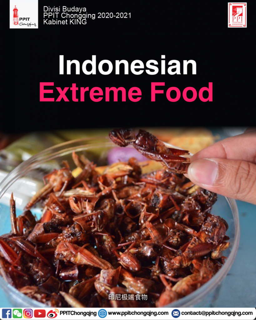 Indonesian Extreme Food